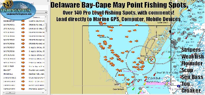Delaware Bay & Cape May GPS Fishing Spots | Striper